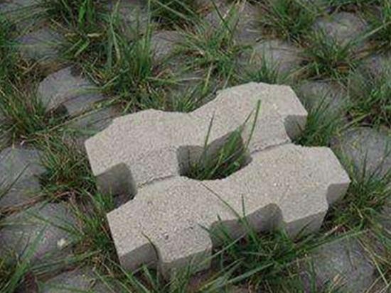 内蒙古草坪砖(实景拍摄2)
